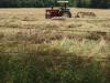 farming-5